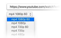 Choose Video Quality