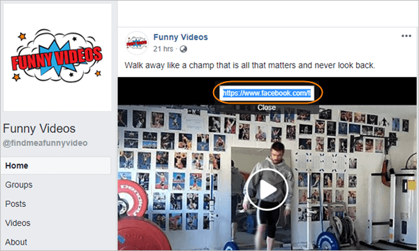 Copy Link of Facebook Video